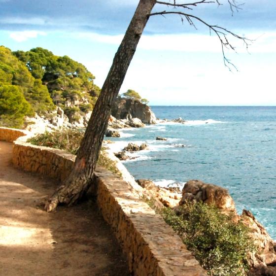 Coast Footpath